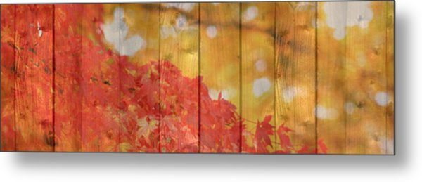 Autumn Outdoors 1 Of 2 Metal Print