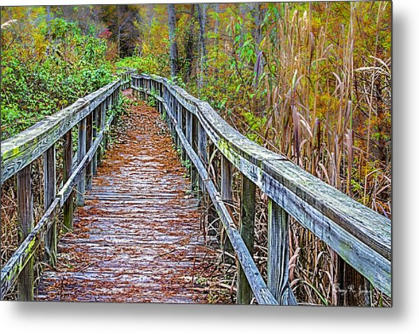 Autumn Outdoors Metal Print by Barry Jones