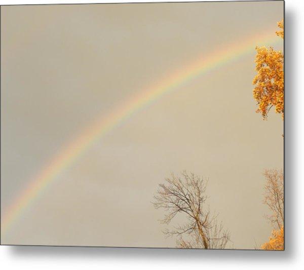 Autumn Rainbow Metal Print by Cim Paddock