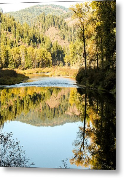 Autumn Reflections 5 Metal Print by Curtis Stein