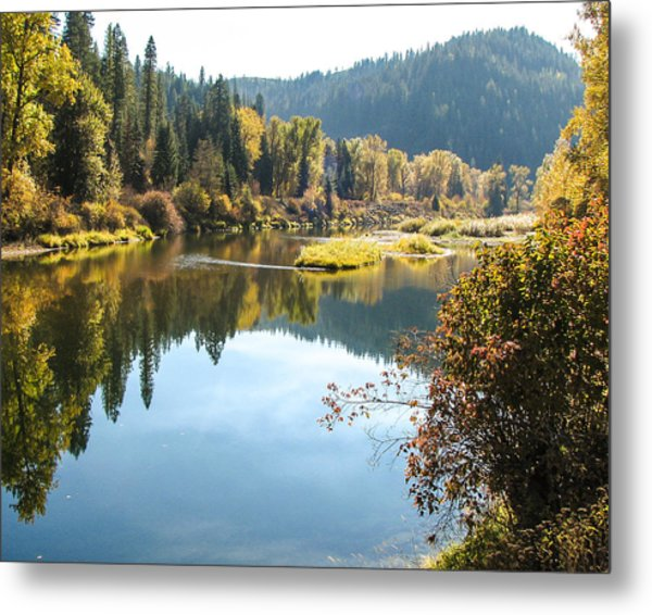 Autumn Reflections Metal Print by Curtis Stein