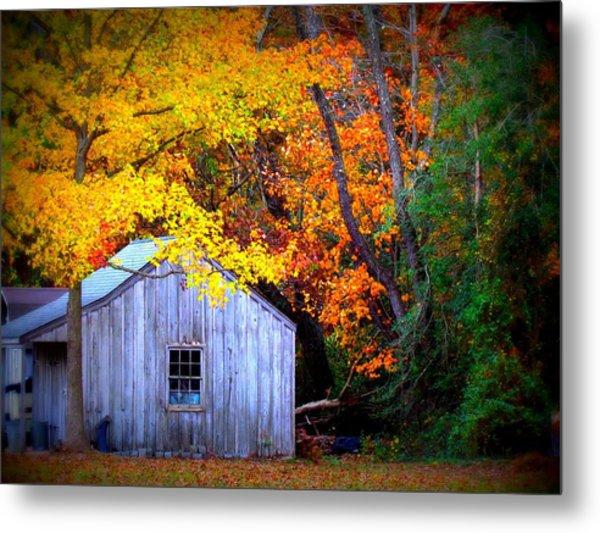 Autumn Rest Metal Print by Trish Clark