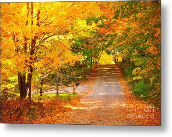 Autumn Road Home Metal Print