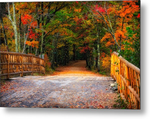Metal Print featuring the photograph Autumn Road by Jeff Sinon
