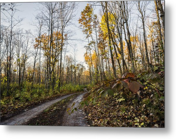 Autumn Road Metal Print by Paul Geilfuss