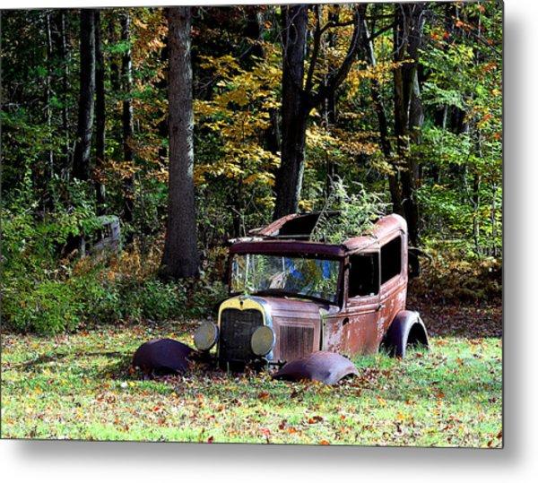 Autumn Rust Metal Print