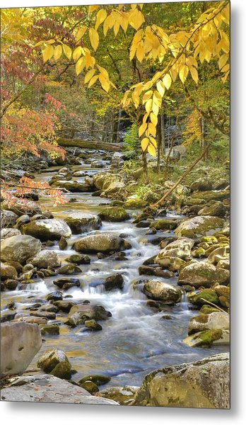 Autumn Serenity Metal Print by Mary Anne Baker