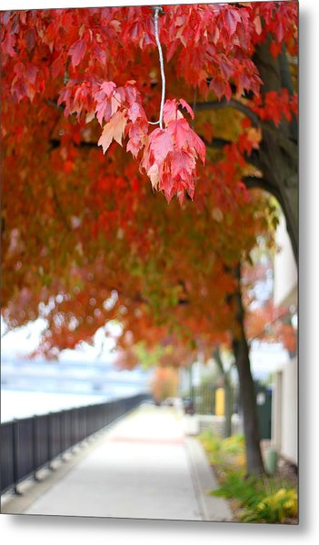 Autumn Sidewalk Metal Print
