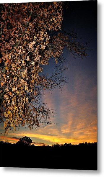 Autumn Sky And Leaves 2 Metal Print