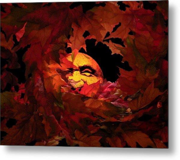 Autumn Sun Metal Print