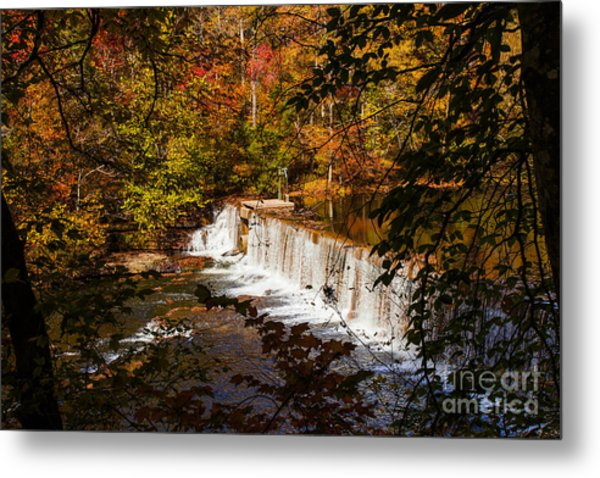 Autumn Trees On Duck River Metal Print