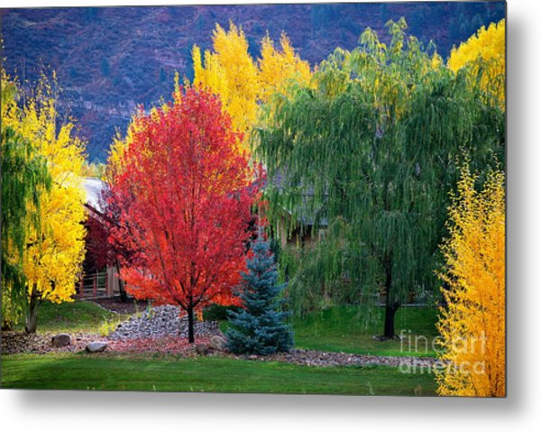 Autumn Trio Metal Print