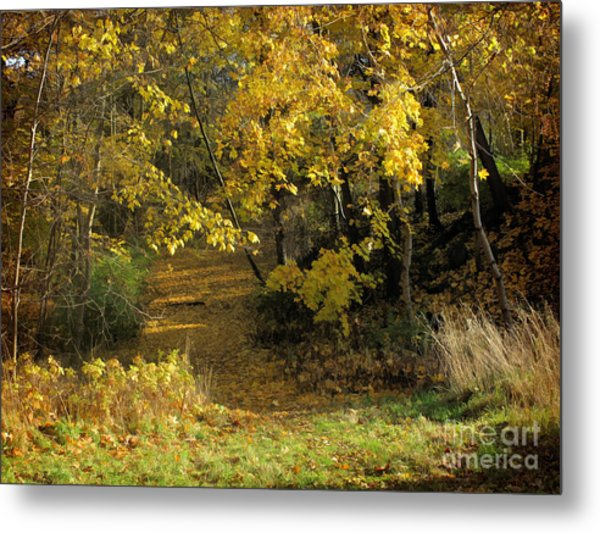Autumn Walk Metal Print by Lutz Baar