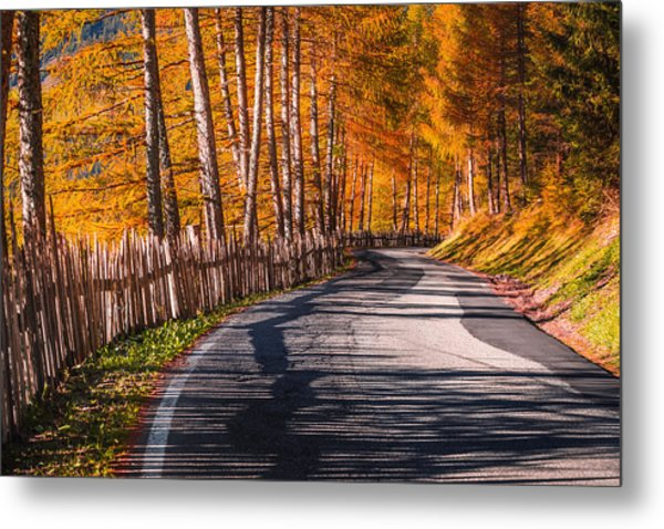 Autumn Way Metal Print