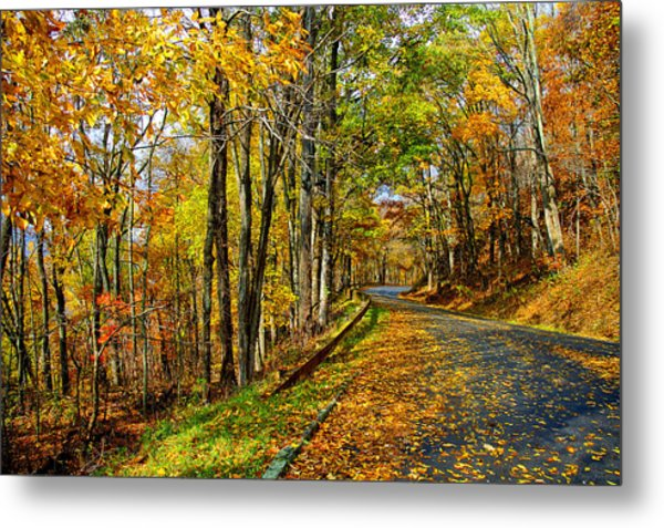 Autumn Winding Road Metal Print