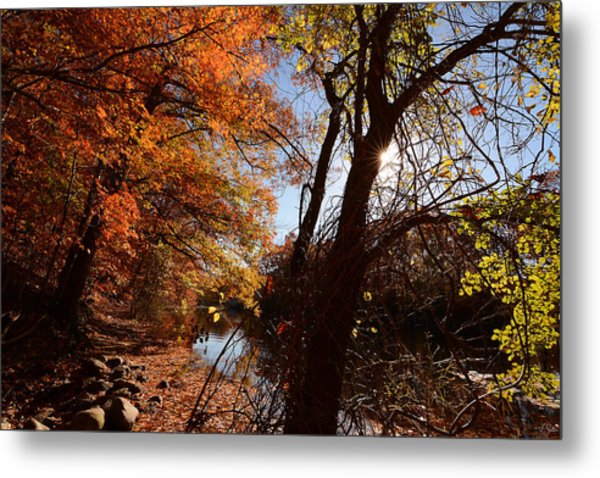 Autumnal Break Metal Print