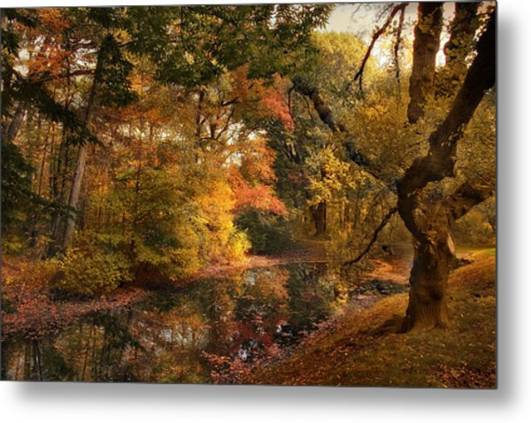 Metal Print featuring the photograph Autumn's Edge by Jessica Jenney