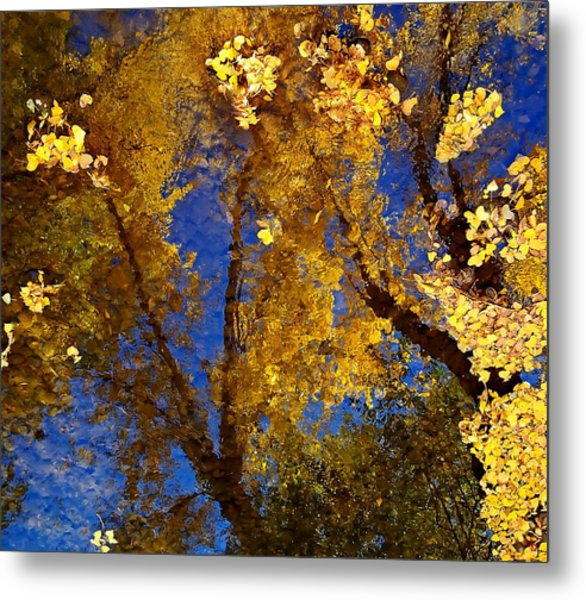 Autumns Reflections Metal Print