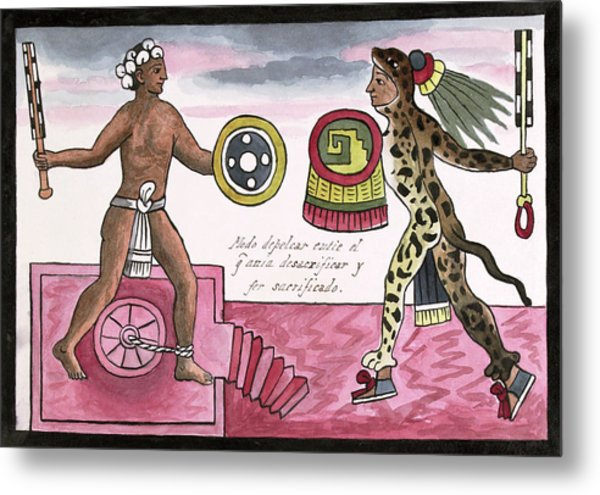 Aztec Sacrificial Fight Metal Print by Library Of Congress