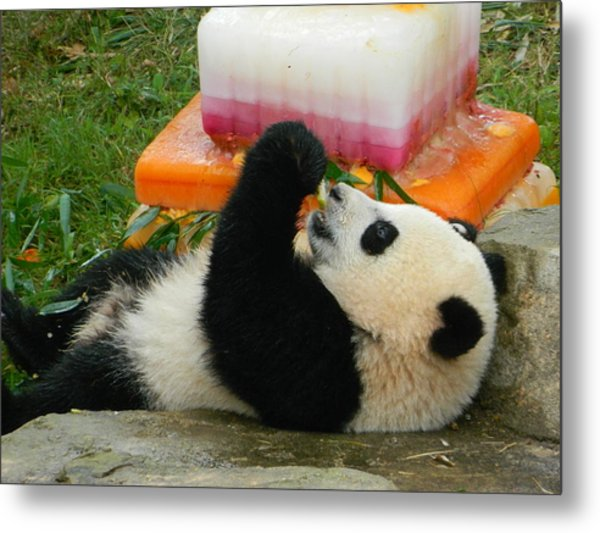 Baby Bao Bao's First Birthday Metal Print