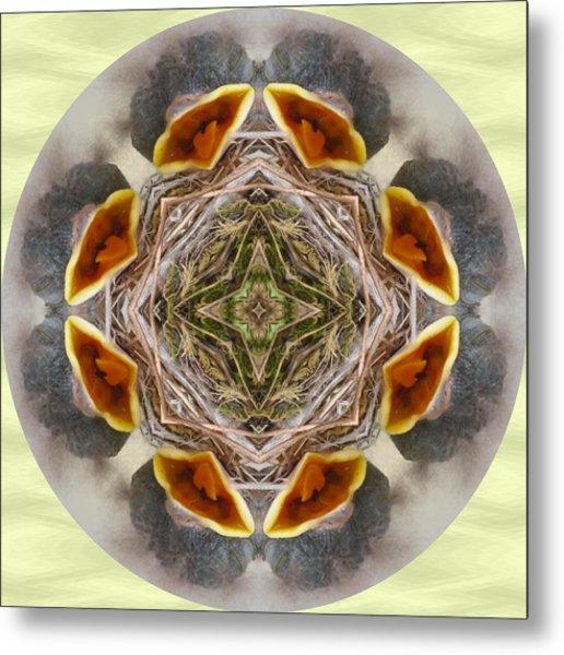 Baby Bird Kaleidoscope Metal Print