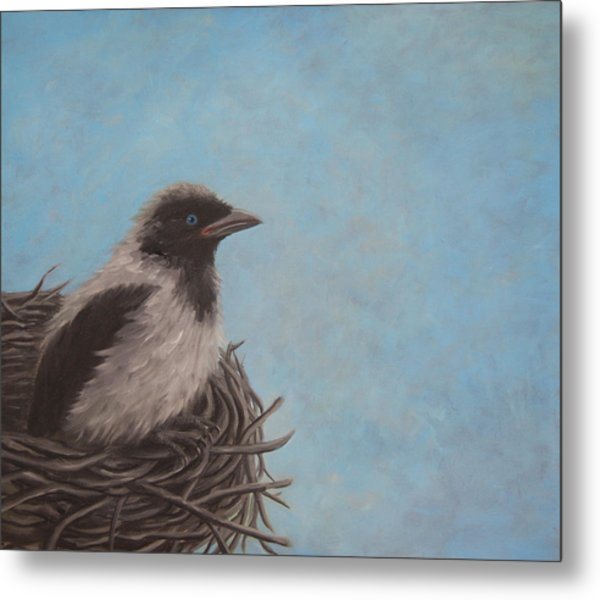 Baby Crow Metal Print