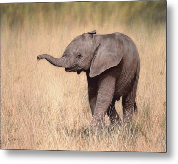 Elephant Calf Painting Metal Print