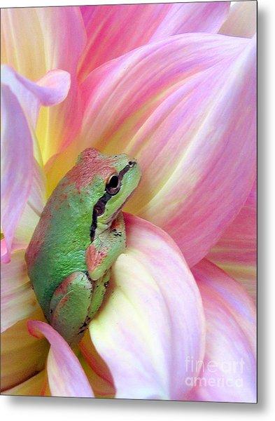 Baby Frog Metal Print