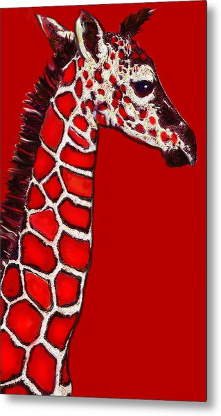 Baby Giraffe In Red Black And White Metal Print