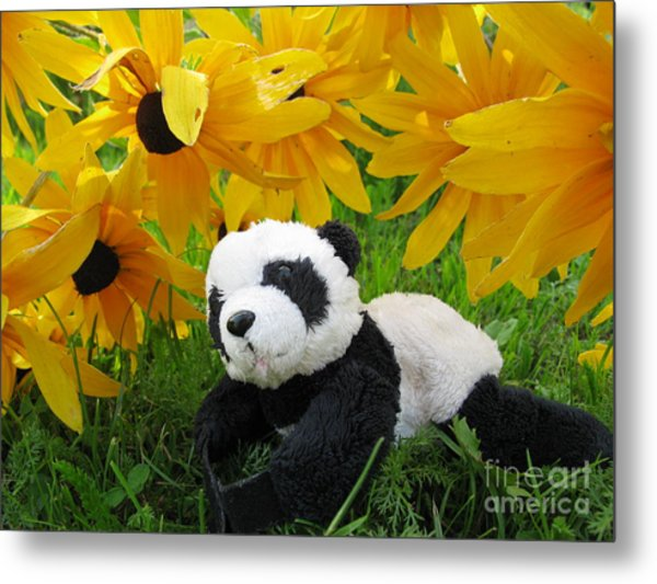 Baby Panda Under The Golden Sky Metal Print