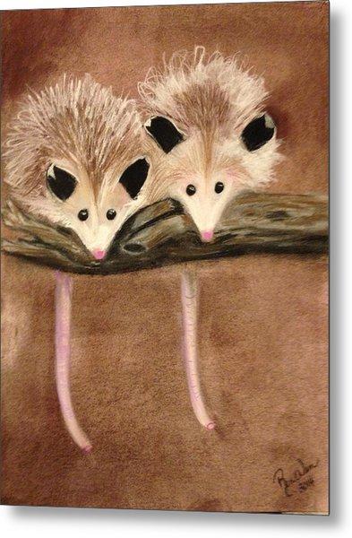 Baby Possums Metal Print