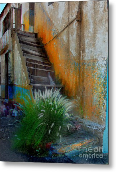 Back Entry Metal Print by CJ  Rider