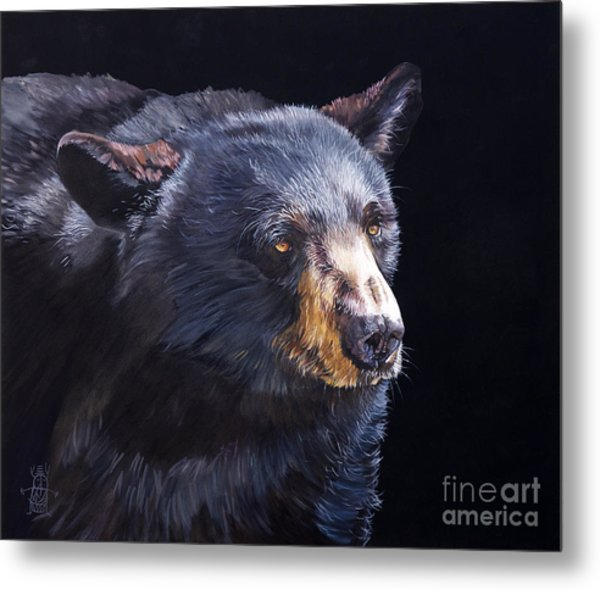 Back In Black Bear Metal Print