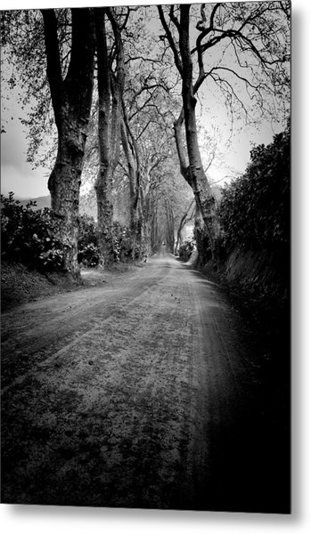 Back Road East Metal Print