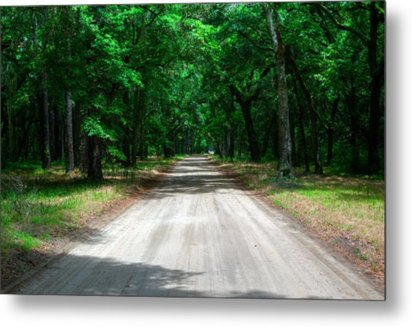 Back Roads Of South Carolina Metal Print