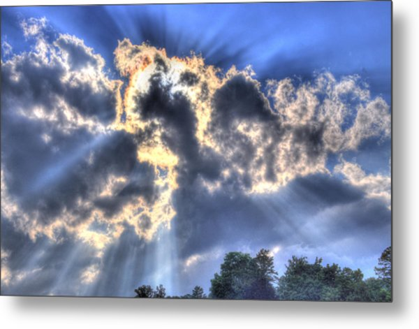 Backlight Metal Print