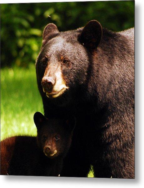 Backyard Bears Metal Print