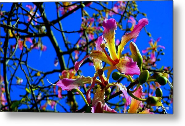Bad Orchid  Metal Print