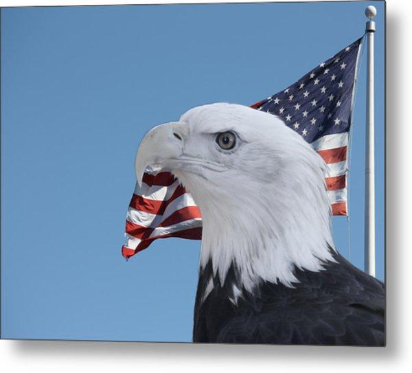 Bald Eagle And Flag Metal Print