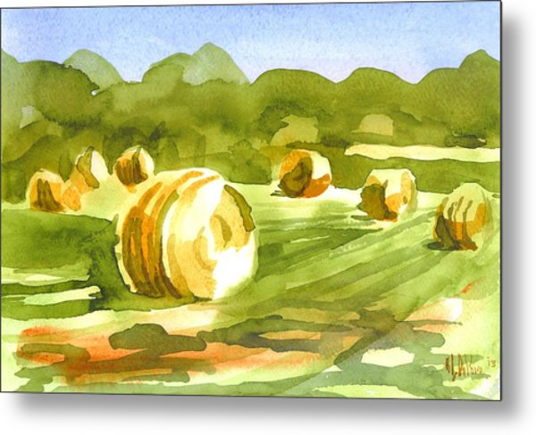 Bales In The Morning Sun Metal Print