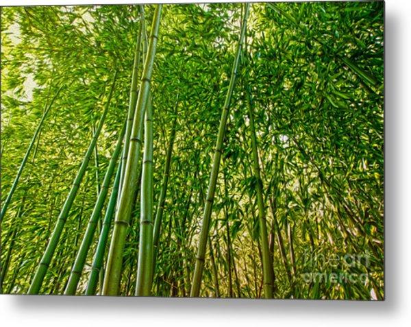 Bamboo Metal Print by Nur Roy