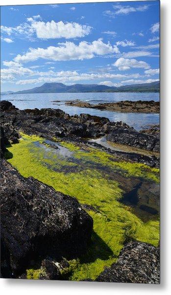 Bantry Bay In August Metal Print