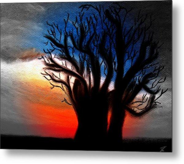 Baobab Tree 2 Metal Print