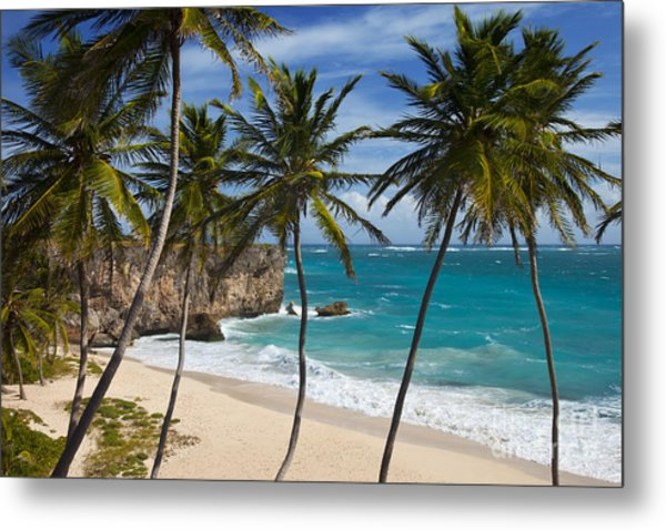 Metal Print featuring the photograph Barbados Beach by Brian Jannsen