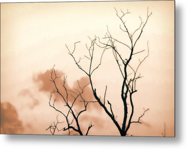 Bare Limbs Metal Print