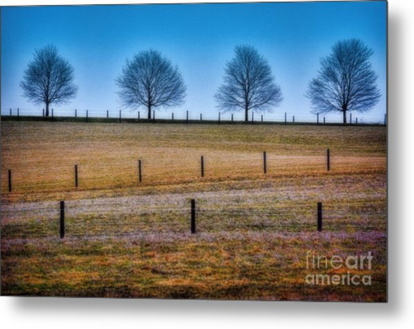 Bare Trees And Fence Posts Metal Print