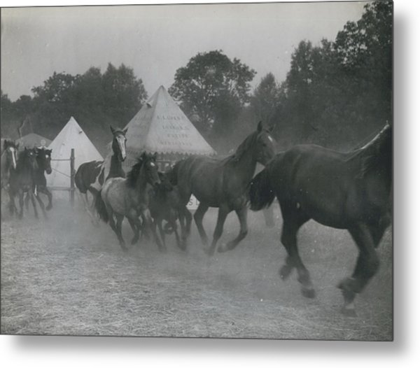 Baret�s 700 Years Old Cattle And Pleasure Fair Opens�� Metal Print by Retro Images Archive