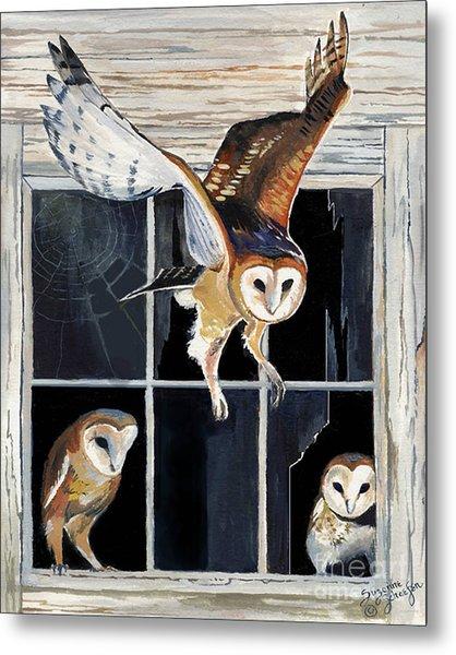 Barn Owl Family Metal Print