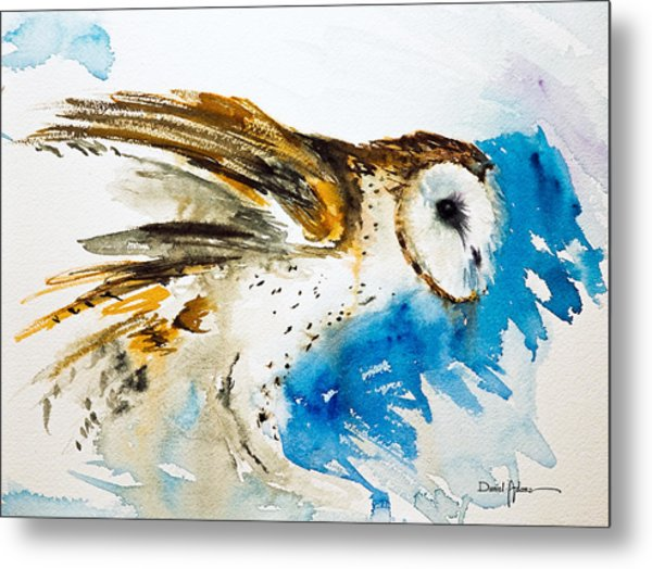 Da145 Barn Owl Ruffled Daniel Adams Metal Print