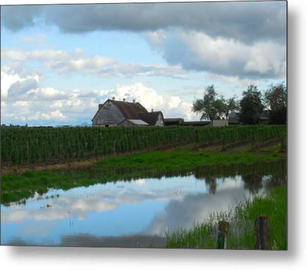 Barn Reflected In Pond  Metal Print